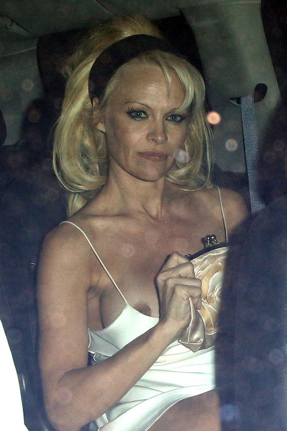 gallery_enlarged-Pam-Anderson-Massive-Malfunction