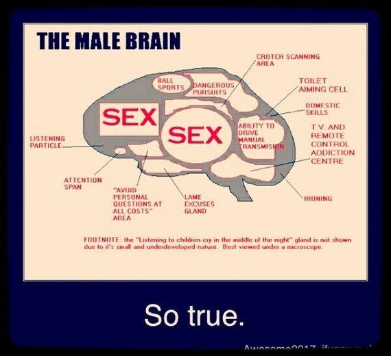 Brainy-Facts