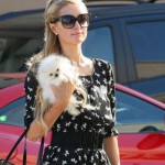Paris Hilton Out in West Hollywood