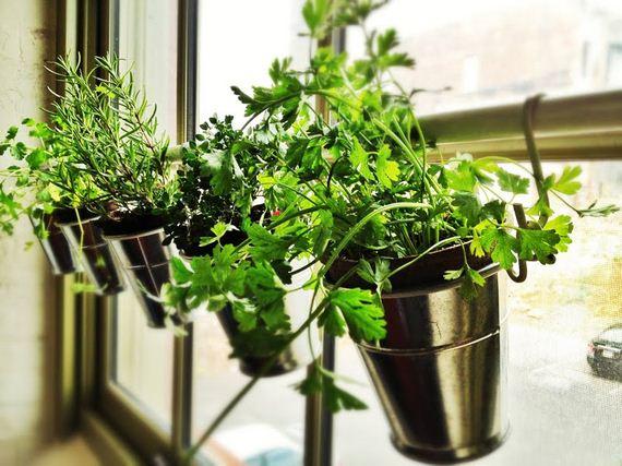 06-Herb-Gardens