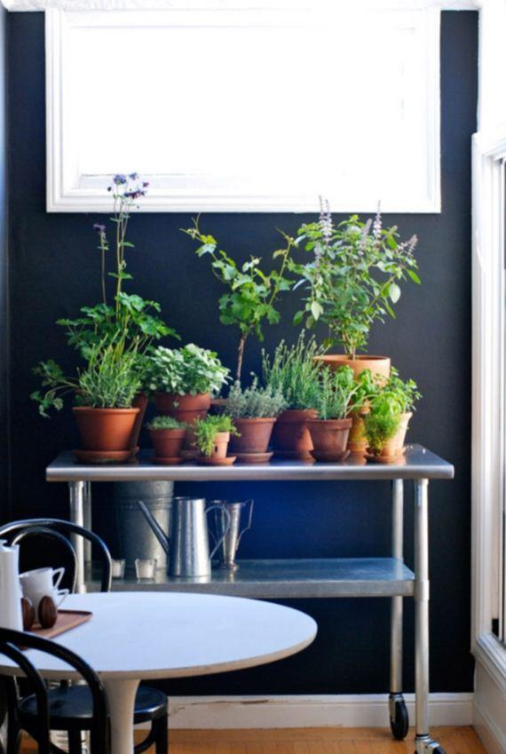 07-Herb-Gardens