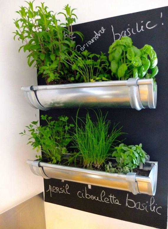 12-Herb-Gardens