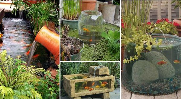 Cool Garden Ideas Simple Cool Garden Or Backyard Aquarium Ideas Will Blow Your Mind Design Decoration