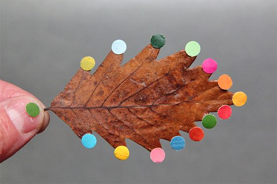 08-Fall-Leaf