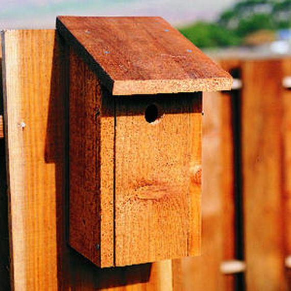 06-Make-Birdhouses