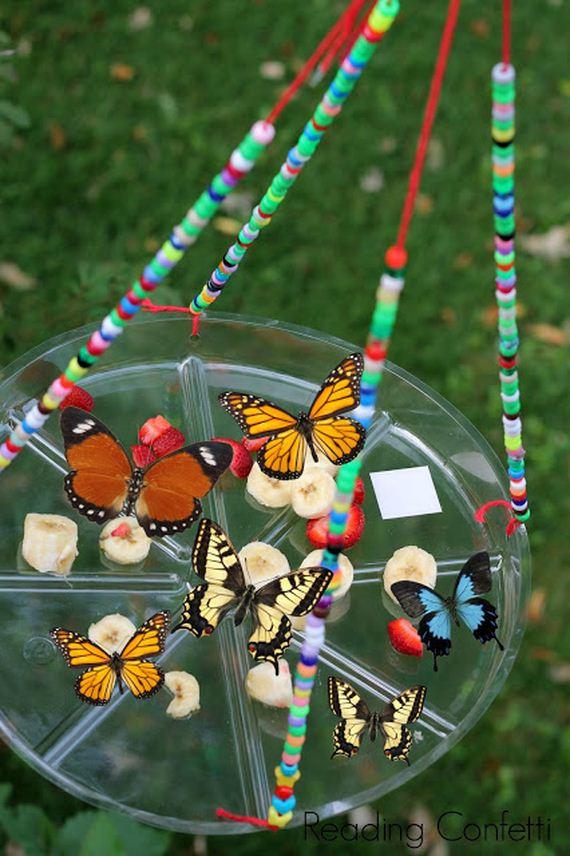 12-butterfly-feeder