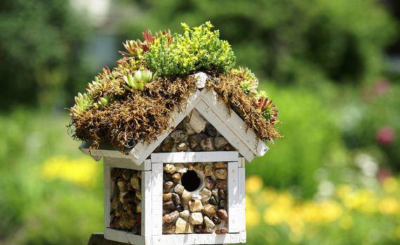 17-Make-Birdhouses