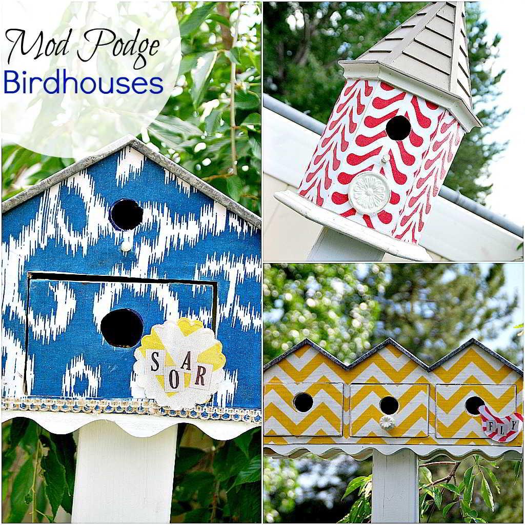 bird_houses