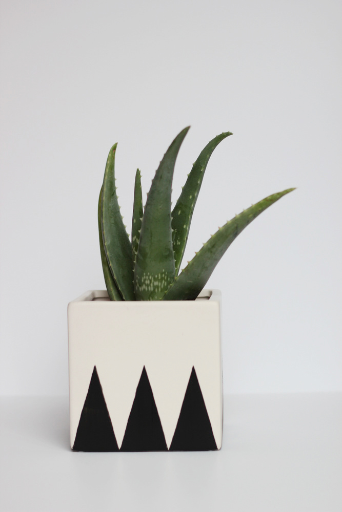 19-Planter-Projects