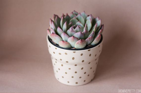 30-Planter-Projects