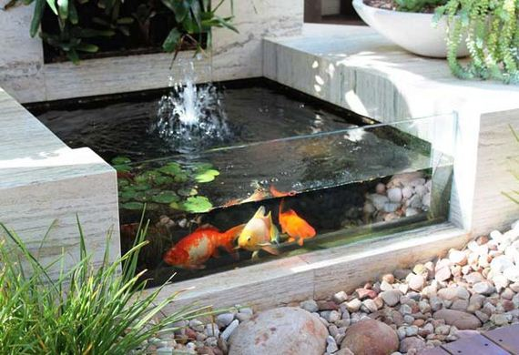 Amazing small garden or backyard aquarium ideas for Amazing small gardens
