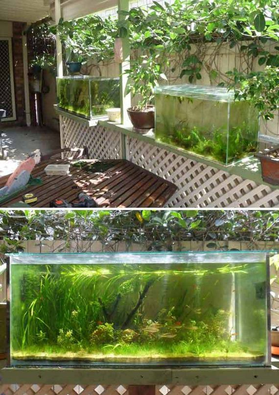 12-outdoor-fish-tank-pond-woohome