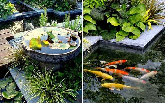 16-outdoor-fish-tank-pond-woohome