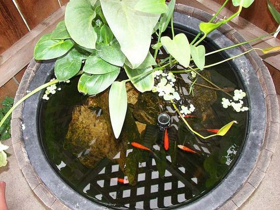 18-outdoor-fish-tank-pond-woohome
