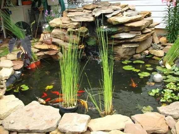 21-outdoor-fish-tank-pond-woohome