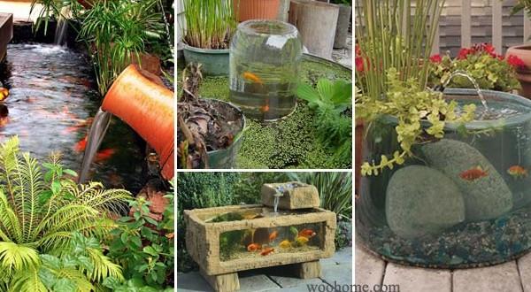 Amazing small garden or backyard aquarium ideas for Amazing small gardens