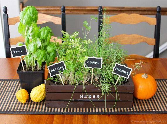 07-Indoor-Gardens