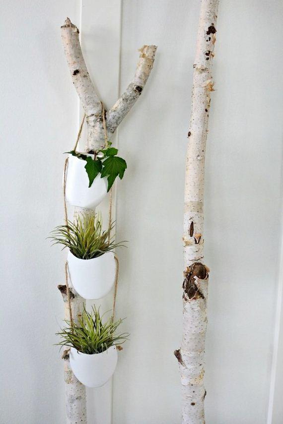 09-Indoor-Gardens
