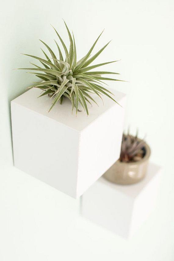 10-Indoor-Gardens