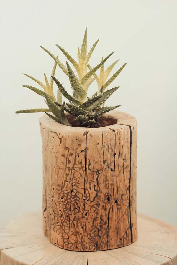diy-stump-vase-11