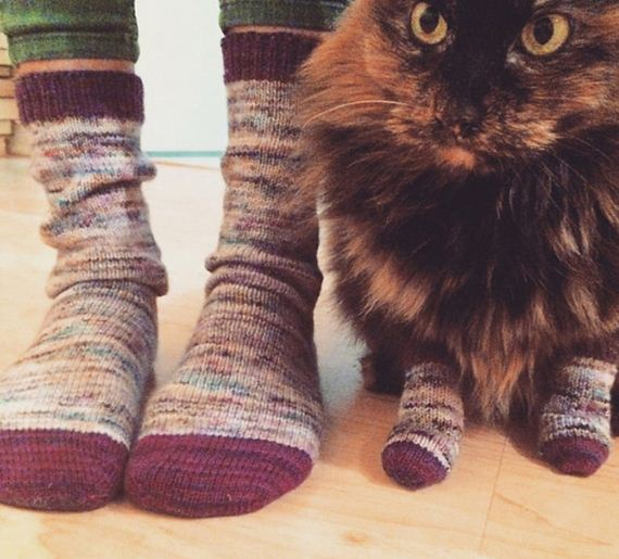 16-Everyone-Loves-Mittens