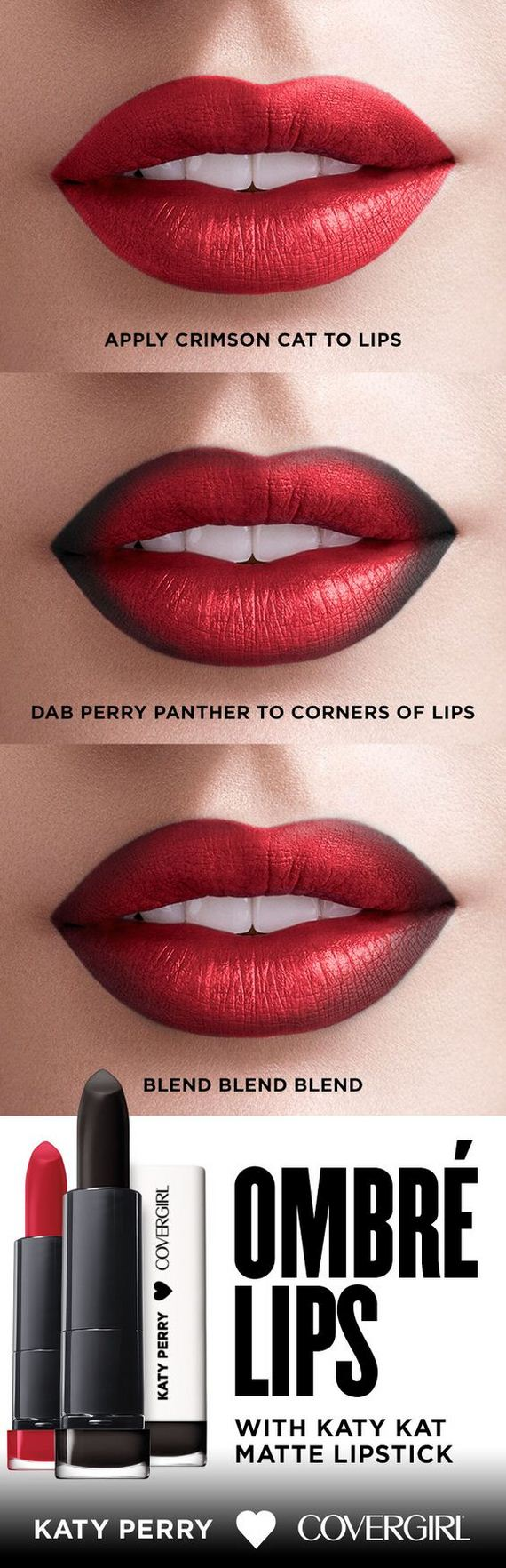 12-ombre-lips-perfectly