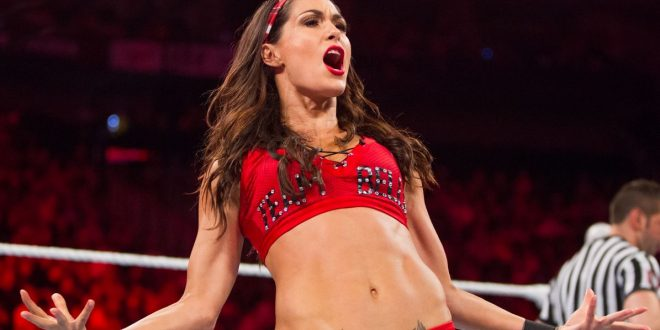 The Hottest Brie Bella Photos Around The Net